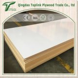 MDF прокатанный меламином Board/MDF 18mm белым