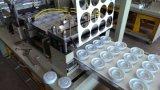 Couvercle en plastique faisant le prix de machine