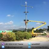 Het zonne & Systeem van de Energie van de Wind Zonne & van de Wind Hybride,