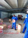 De Apparatuur en de Bouw van het Huis van het gevogelte voor Kant en klaar Project in Mozambique in Hete Verkoop