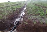 Mangueira de pulverização do sistema de extinção de incêndios da mangueira do polietileno cru para o diâmetro 28.5mm da irrigação da agricultura