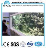 Proyecto material de acrílico modificado para requisitos particulares del tanque del tiburón del túnel del acuario