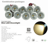 1W 110V 220V LEIDENE van 15mm Mini LEIDEN Ce RoHS van Downlight Lamp