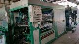 Automática de la ampolla de plástico que forma la máquina para la formación de paquete de ampolla