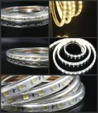 정원 또는 거리 또는 당 점화 110V/220V에 사용되는 높은 루멘 LED 지구