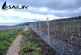 Alambre hexagonal de Sailin para la red del conejo