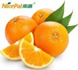 Polvere fresca seccata a spruzzo naturale pura del succo di arancia di 100% per la bevanda