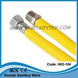 Edelstahl-gewölbter Gas-Schlauch (H02-104)