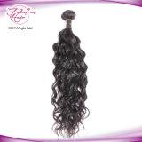 Cabelo natural malaio do Malaysian da onda 100% dos distribuidores por atacado do Weave do cabelo