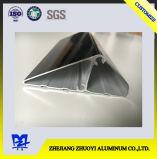 De Uitdrijving van het aluminium voor Ladder a