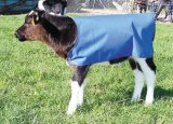 Скотины крышки икры грея Blanket куртки икры