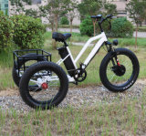 Cargador Inteligente eléctrico triciclo con el PAS