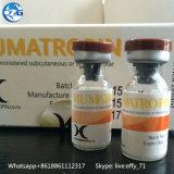 191AA Hyg Steroid-Hormon-Handhabung am Boden Hyge-Tropin des Bodybuilding-8iu /10iu