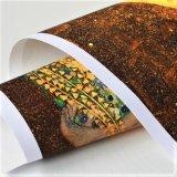 Foto van het Canvas van de Kleur Cmyk van het Af:drukken van het Canvas van de foto de Digitale Volledige