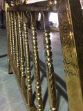 Disegni dell'inferriata della scala dell'acciaio inossidabile di stile della Malesia per la Camera