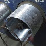 중국 제조자 (18# 1.2mm)에서 직류 전기를 통한 강철 철 철사 Gi 철사 바인딩 철사 동점 철사