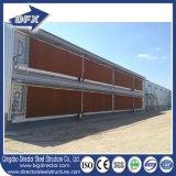 Light Steel Poultry Shed Prefab Chicken Farm Building Design com equipamento de controle automático