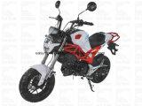 Ход диска EPA Cdi мотоцикла Zhenhua Pmz125-2 125cc Elec