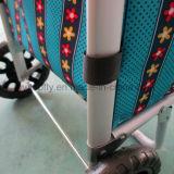 Flippiges intelligentes leichtes faltbares Multifunktionshartes - tragende galvanisierte kaufenlaufkatze