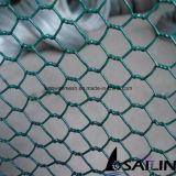 Red de alambre hexagonal revestido del PVC para el material de construcción con SGS