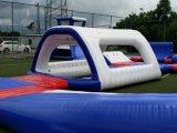 販売のための大きい遊園地屋外の膨脹可能な水スライド