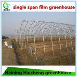 Дом самого дешевого земледелия стальная зеленая