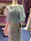 Abend-Kleid-reale Probe der Nixe-2017