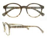 Glazen van Eyewear van het Frame van de manier de Goedkope Optische