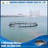 Gaiola de peixe flutuante de PEAD para tilápia com serviço de montagem no local