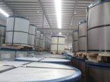 PPGI, катушка PPGL, Prepainted плита Galvalume стальная/лист/катушка