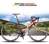 多彩な700c自転車の道のバイク