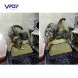 Melhor qualidade de papelão ondulado Cat Scratchers Pet Toys