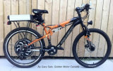 kit del motor del eje de la bici de 250W 500W 1000W E con el regulador de la onda de seno