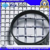 Construction를 위한 세륨을%s 가진 최신 Dipped Galvanized Square Wire Mesh