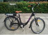 En15194大人のための公認250W安い電気都市バイク