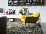 Le jeu coloré de présidence de loisirs de fibre de verre pour la salle de séjour conçoit (FC-001)