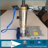 Angeschaltene versenkbare tiefe Quellwasser-Solarpumpe mit Batterie