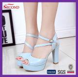 Sandali di colore delle donne blu dell'unità di elaborazione