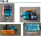 2016 heißer verkaufenwurzel-Gebläse-Hochdruckgebläse-zentrifugaler Ventilator Jzsh-65