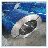 الصين صاحب مصنع برد - يلفّ يغلفن فولاذ ملفّ