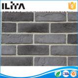 La brique de mur, usine de brique, revêtement mince de brique couvre de tuiles le placage pour la décoration de mur (18028)