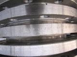 De Flens van de Plaat van het roestvrij staal als Asme B16.5