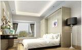 内閣Fjの-14とマーフィーの壁のベッドに目に見えないベッドをリボルビングSepsion熱い販売アイテム
