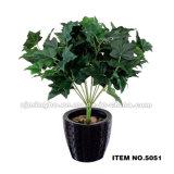 Plantas artificiales de los bonsais de la alta calidad casera de las decoraciones