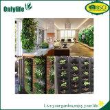 Onlylife umweltfreundlicher Garten-wachsen hängende Beutel-Pflanze Beutel mit geteilten Löchern