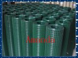 中国Factory Galvanized/PVC Coated Welded Wire Mesh (20years工場及びISO9001 Approved)
