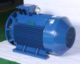 Цены по прейскуранту завода-изготовителя 100HP электрического двигателя серии IP55 y трехфазные