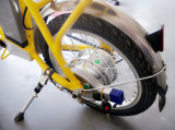 250W складывая электрический Bike с свинцовокислотной батареей (FB-008)
