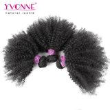Человеческие волосы бразильского Afro Kinky курчавые с закрытием
