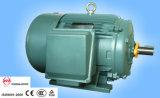 Moteur asynchrone efficace standard triphasé standard de la NEMA Motor/NEMA haut